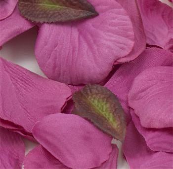 Cerise Pink Silk Rose Petals