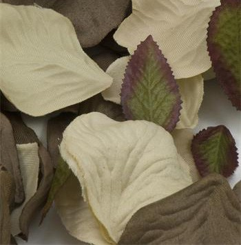 Chocolate Brown & Cream Silk Rose Petals