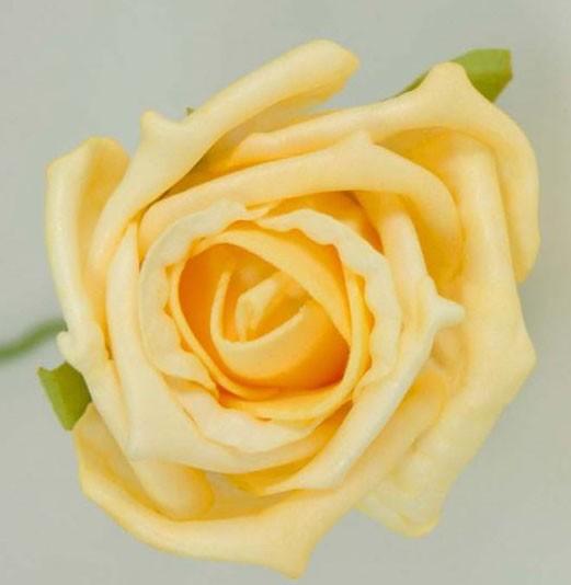 Gold Medium Rose Sample