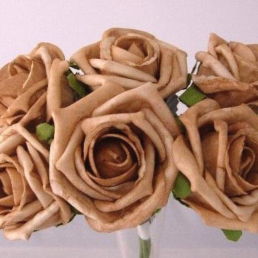 6 Luxury Mocha Medium Roses