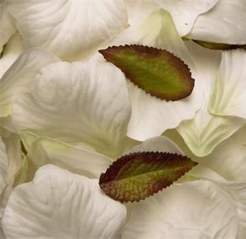 White Silk Rose Petals