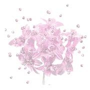 Babies Breath - 12 Stems - Baby Pink