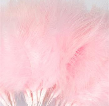 Baby Pink Fluff Feathers