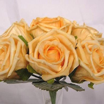 6 Luxury Gold Medium Roses