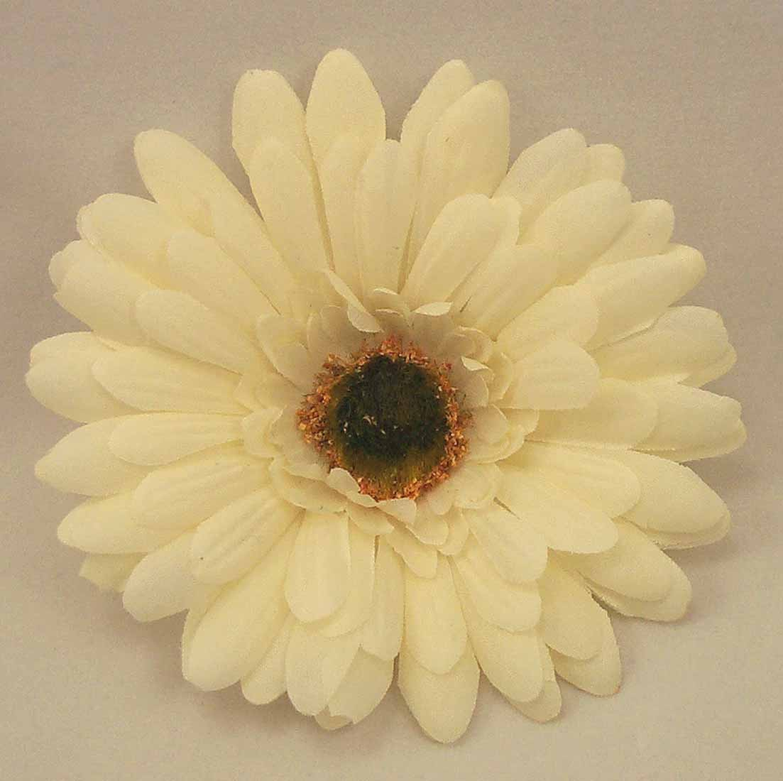 Ivory Gerbera Sample