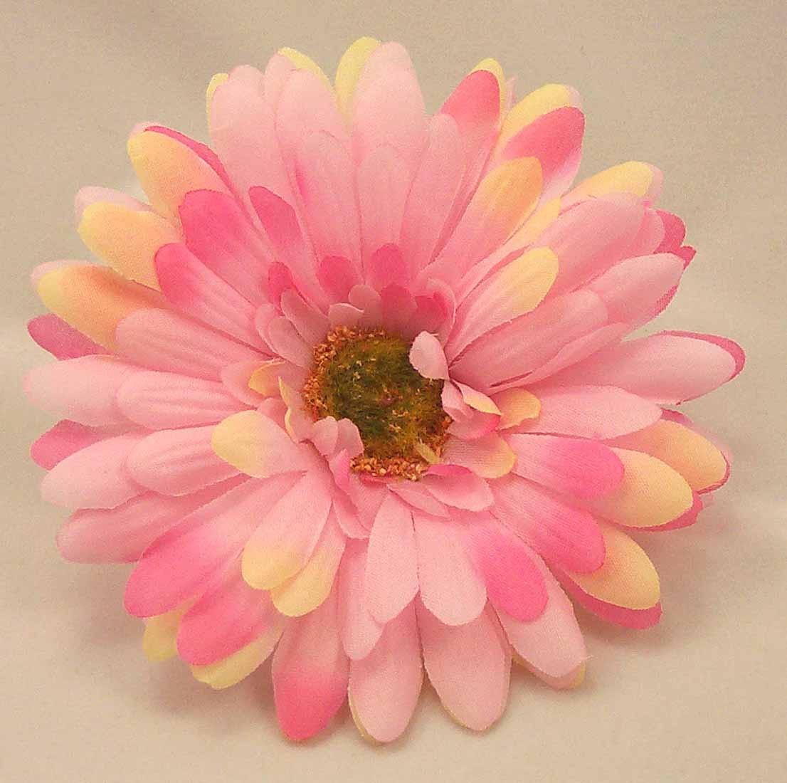 Pink Gerbera Sample