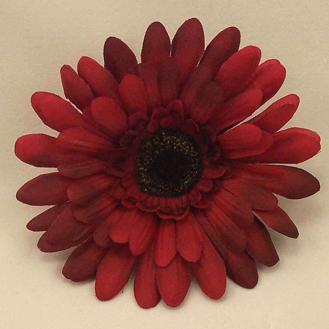 Burgundy Gerbera Sample