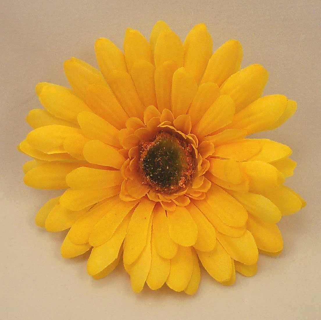 Yellow Gerbera Sample