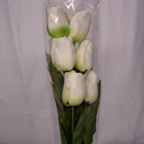 6 Silk Cream Tulips