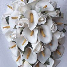 Ivory Cala Lily Shower Bouquet