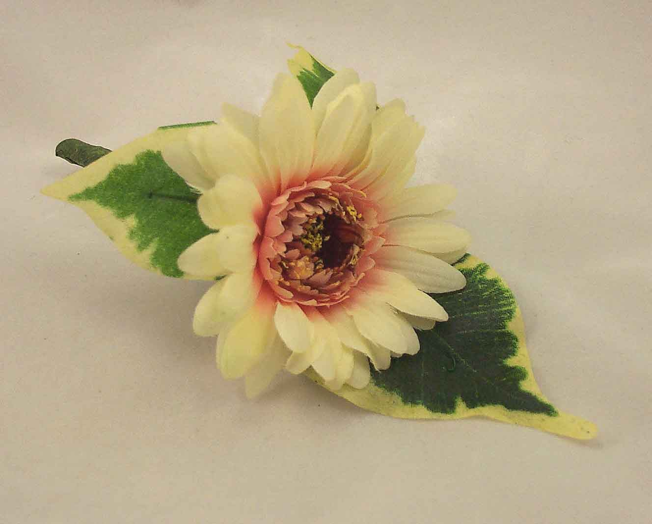 Cream Gerbera Buttonhole