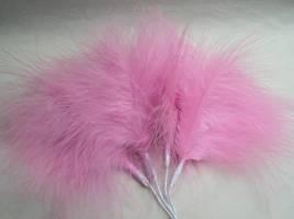 Fuchsia Fluff Feathers