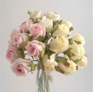 White Jubilee Rose Sample