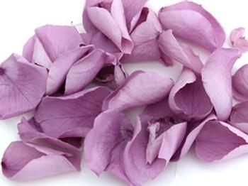 Lilac Real Rose Petals