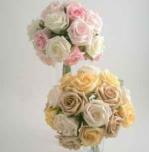 Light Pink Medium Rose Sample