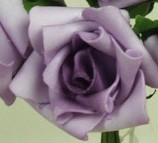 Purple Medium Rose Sample