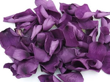 Purple Real Rose Petals