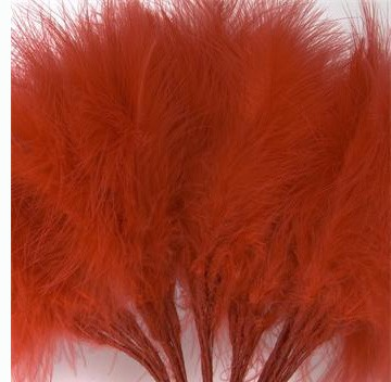 Red Fluff Feathers