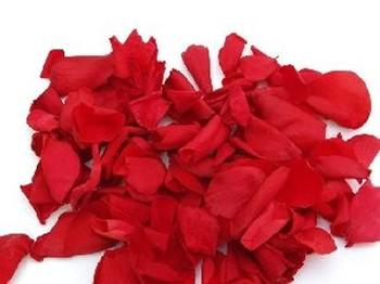 Red Real Rose Petals