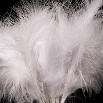 White Fluff Feathers