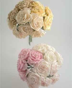 Cream Wild Rose Sample