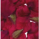 1000 Burgundy Silk Rose Petals