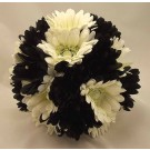 Black & White Gerbera Posy Bouquet