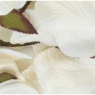 1000 Ivory Silk Rose Petals