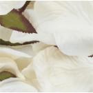 Ivory Silk Rose Petals