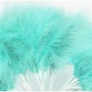 Aqua Fluff Feathers