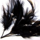 Black Diamante Feathers