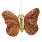Copper Small Feather Butterflies