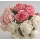 6 Luxury Pink Crimped Roses