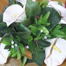 Ivory Cala Lily Table Arrangement