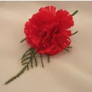 Red Carnation Fern Buttonhole