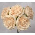 5 Luxury Open Cream Roses