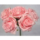 5 Luxury Open Pink Roses