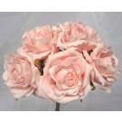 5 Luxury Open Light Pink Roses