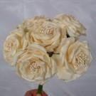 6 Luxury Wild Cream Roses