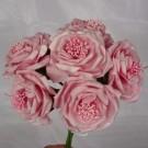 6 Luxury Wild Pink Roses