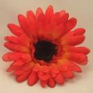Orange Gerbera Sample