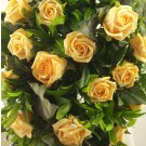 Gold Rose Shower Bouquet