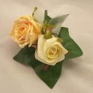 Gold & Ivory Rose Buttonhole