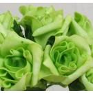 6 Luxury Lime Green Medium Roses