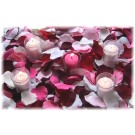 20 Sample Rose Petals