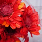 6 Silk Red Gerbera