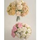 Cream Small Rose Sample